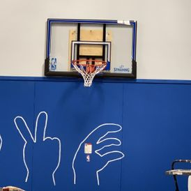 view of a basketball net